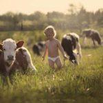 Állandóság vagy változatosság – avagy mi kell a gyereknek a nyárra?