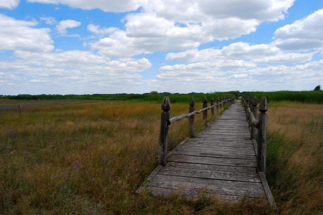 Magyarország rejtett természeti csodái 10. – Bihari-sík