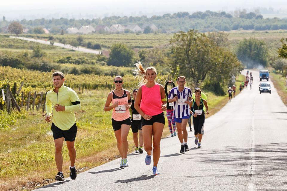 Sportvölgy 2017 – avagy minden, ami mozgás a 27. Művészetek Völgyében