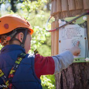 Csak természetesen! Erdészeti játszótér, interaktív tanösvények és Makk Kuckó a Budakeszi Vadasparkban