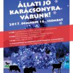 Állatok karácsonya a Budakeszi Vadasparkban