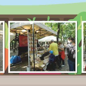 Ínycsiklandó kalandok a Budakeszi Vadasparkban