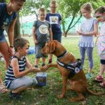 Nagy sikerrel indult meg a gyerekek Budapesti Nyári Fesztiválja