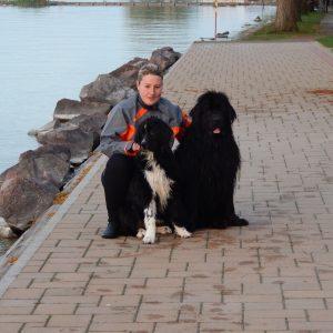 Kutyák tanítják gyermekeknek a biztonságos úszást