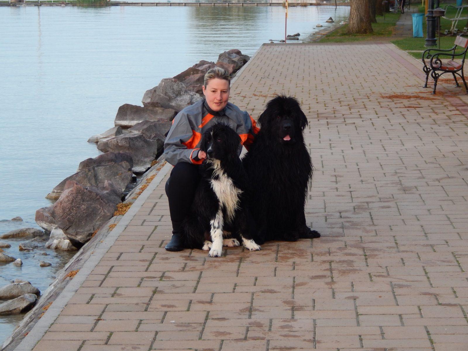 nő két fekete kutyával