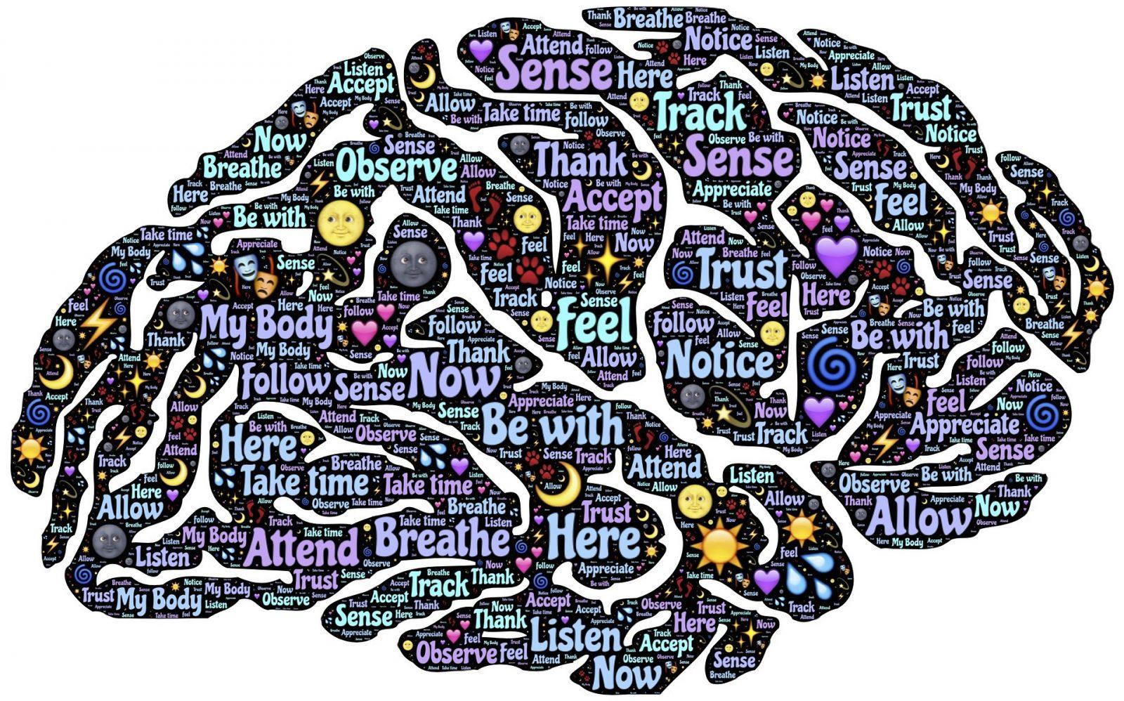 rajz az agyról