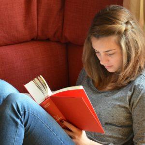 Tippek, hogy ne legyen akkora teher a nyári kötelező olvasmány