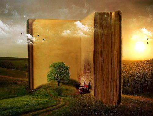 természet a könyveb, könyv a természetben