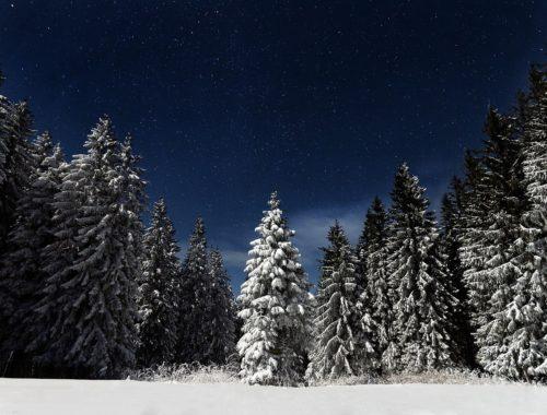éjszakai téli fotó