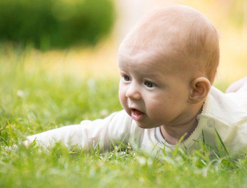 kisbaba fekszik a fűben