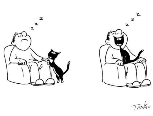 rajz egy emberről és a macskájáról