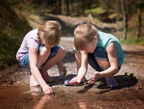 ikrek a természetben