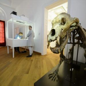 Új élménytér a gyöngyösi Mátra Múzeumban