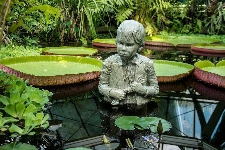 zöld szobor egy tóban, zöld növényekkel