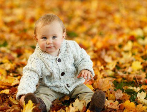 kisbaba ül az avarban