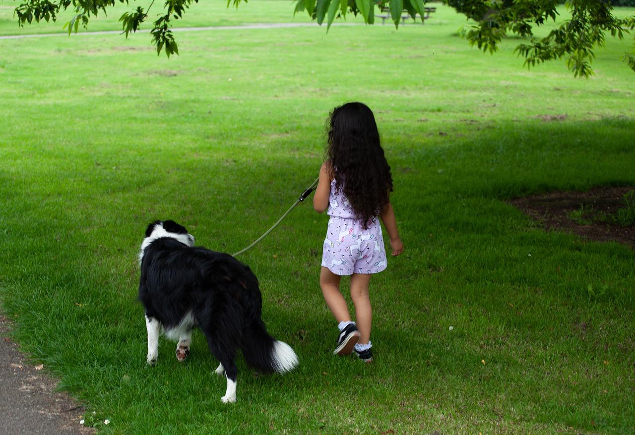 kislány pórázon sétáltatja kutyáját
