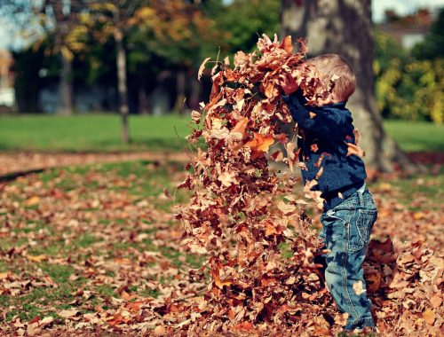 kisfiú játszik az avarban