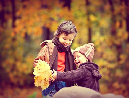 két kisfiú játszik a falevelekkel