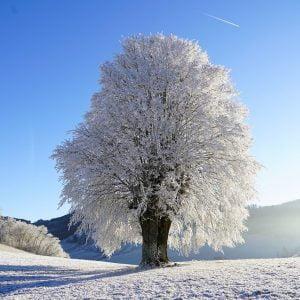 Kihagyhatatlan téli családi programok